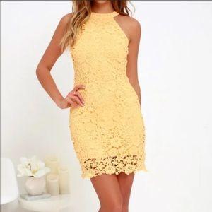 Lulu's Crochet Sheath Dress